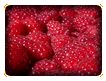 Fresh Raspberries Online Jigsaw Puzzle for Kids